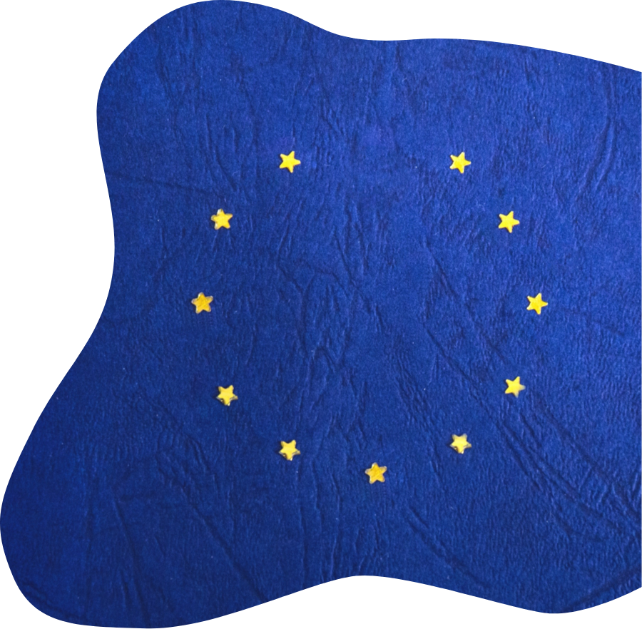 Traducciones para organismos oficiales, traducciones oficiales